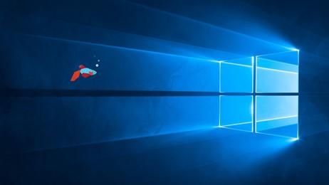 Windows Light Wallpaperhub